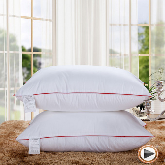100% Cotton Hotel Pillow