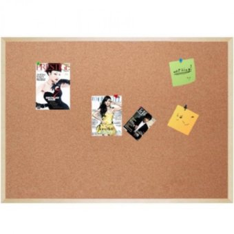 Bulletin Board / Cork Board With Pins (60 x 90cm)