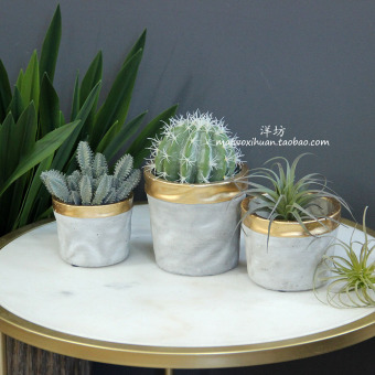 INS gold multi-meat flower cement pots