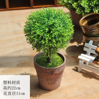 Model Plant potted Bonsaii desktop LZNC