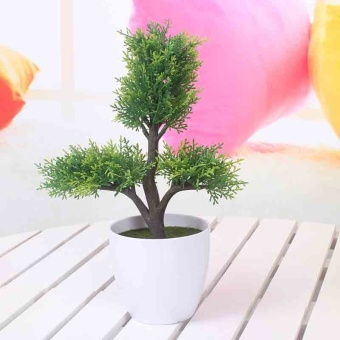 Simulation plants potted Snnei simulation plants potted smallBonsai green plant Decoration Products flower fake potted Ornaments