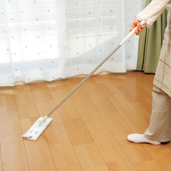 Japan LEC wet and dry dual-floor cleaning mop