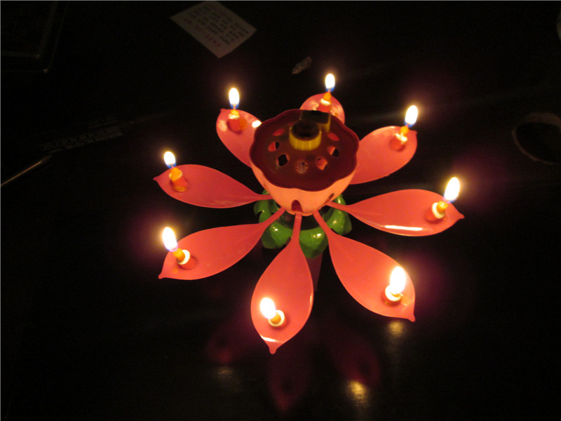 Amazing Musical Lotus Flower Happy Birthday Gift Candle