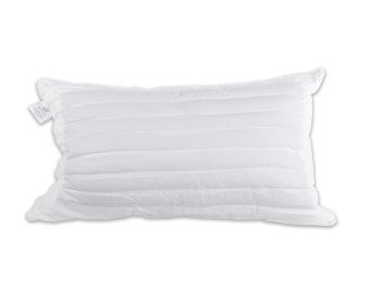 hotelier prestigio down alternative buckwheat pillow