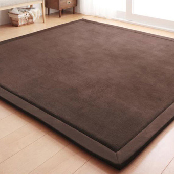 Harga Japanese Premium Living Room Carpet Mats Coffee