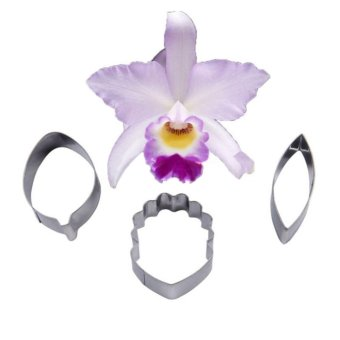 Cake Cookie Cutter Stainless Steel Four-C Orchids Flower Cattleya Sugar Rolled - intl