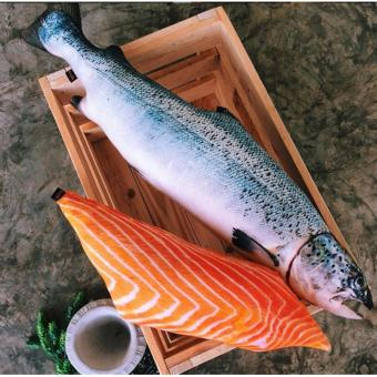 Atlantic Salmon & Sashimi Pillow Set