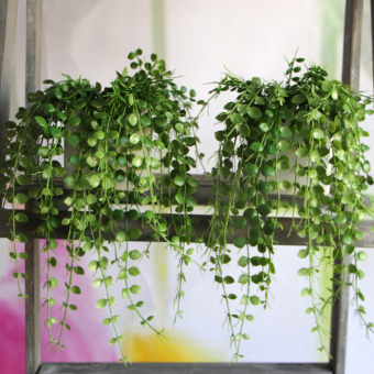 Harga Fresh Money Leaves Fake Plant Artificial FLoral Vine Office Decor Decoration