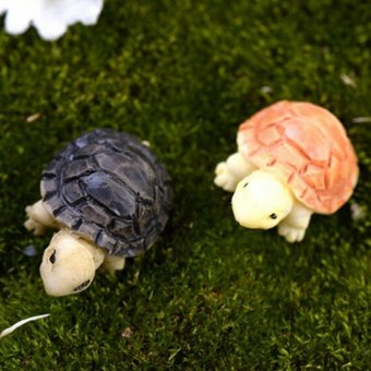 Harga 2pcs Miniature Bonsai Fairy Garden Landscape Tortoise Decor Multi - intl
