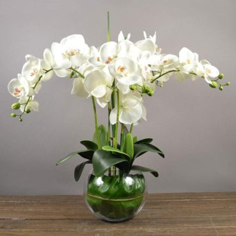 BolehDeals BolehDeals Artificial Floral 12 Head Orchid Phalaenopsis Flower Home Garden Decor White (EXPORT)