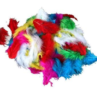 Harga Grandmise Huge Lot of 120 Assorted Mix of Bright Colored Marabou Turkey Feathers 5-10 cm