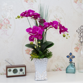 Known root high artificial flowers Butterfly Orchid floraldecorative flower suit artificial flowers potted decoration livingroom dining table flower silk flower