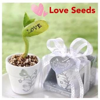 Magical Love Seeds