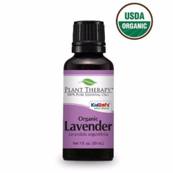 Plant Therapy Organic Lavender Essential Oil 30ml