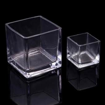 Square hydroponic glass coins grass glass vase containers