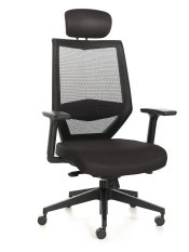 Tengri Mesh Office Chair High Back Singapore