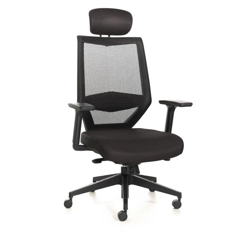 Tengri Mesh Office Chair High Back Singapore