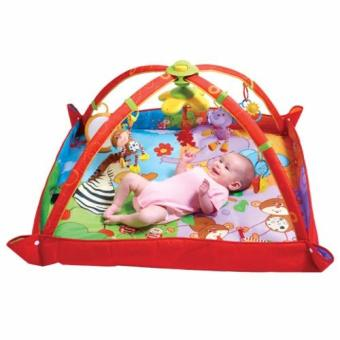 Harga Tiny Love® TL12018 Gymini™ Gym - Move & Play
