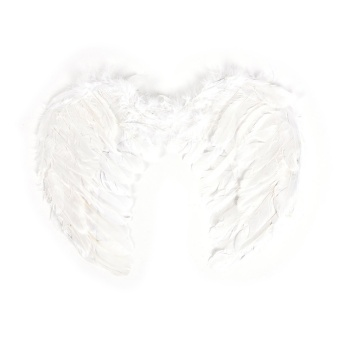 Harga Fashion Feather Wings Angel Fairy Fancy Dress Costume Halloween Party Favor White 80*60cm - intl
