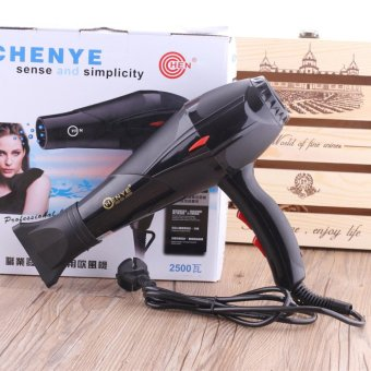 Harga Professional Strong Wind 2500W Cold and Hot Hair Dryer(HD-13) - intl