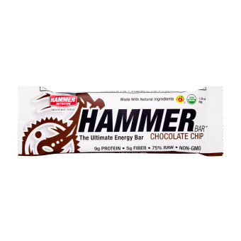 Harga Hammer Energy Bar 12 Pack Chocolate Chip With Free Gift