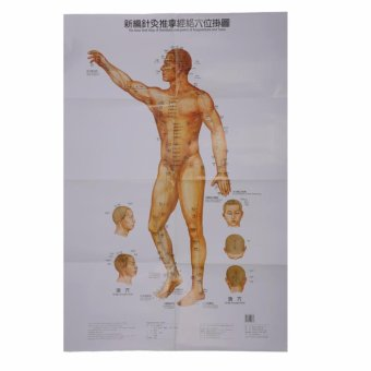 Harga Acupuncture Meridian Acupressure Points Chart Wall Map + BOOK(English & Chinese) - intl