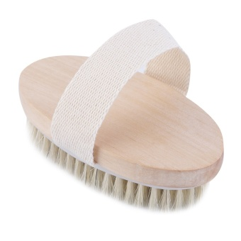 Harga Allwin Hot Dry Skin Body Natural Bristle Brush Soft SPA Brush Bath Massager Home Beige - intl