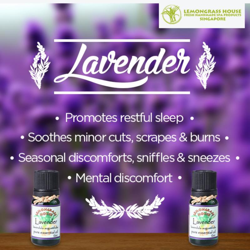 Buy Lemongrass House Lavender Essential Oil 30ml Singapore