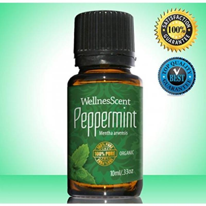 Buy Peppermint Essential Oil 100% Pure Organic & Therapeutic Grade, Used in Aromatherapy -10 Ml Mentha Arvensis Singapore
