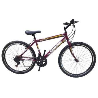 Harga Common Basic Mountain Bike (Purple)