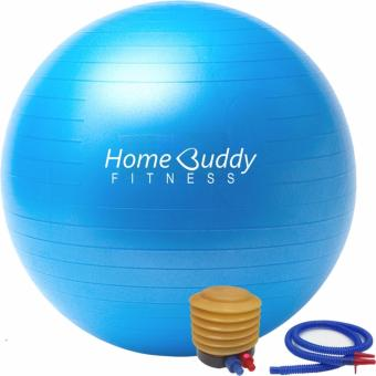 Harga HomeBuddy Swiss Yoga Exercise Gym Ball 65cm with Foot Pump - Color: Metallic Blue