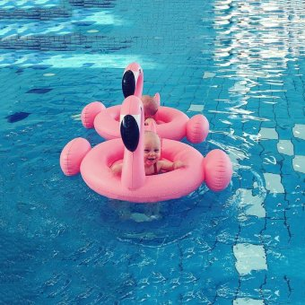 Harga Baby Flamingo Inflatable Swimming Seat Water Seat Lifebuoy