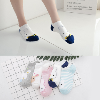 Female thin spring and autumn short socks no-show socks ([5 pairs installed short socks] rogue rabbit)