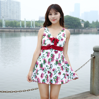 2017 women Plus-sized swimsuit to increase Siamese conservative swimsuit Yiwu swimsuit small Qin swimsuit shop (Pink)