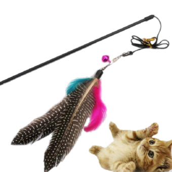 Harga Funny Kitten Play Interactive Fun Toy Cat Teaser Wand Pet Colorful Feather +Bell - intl