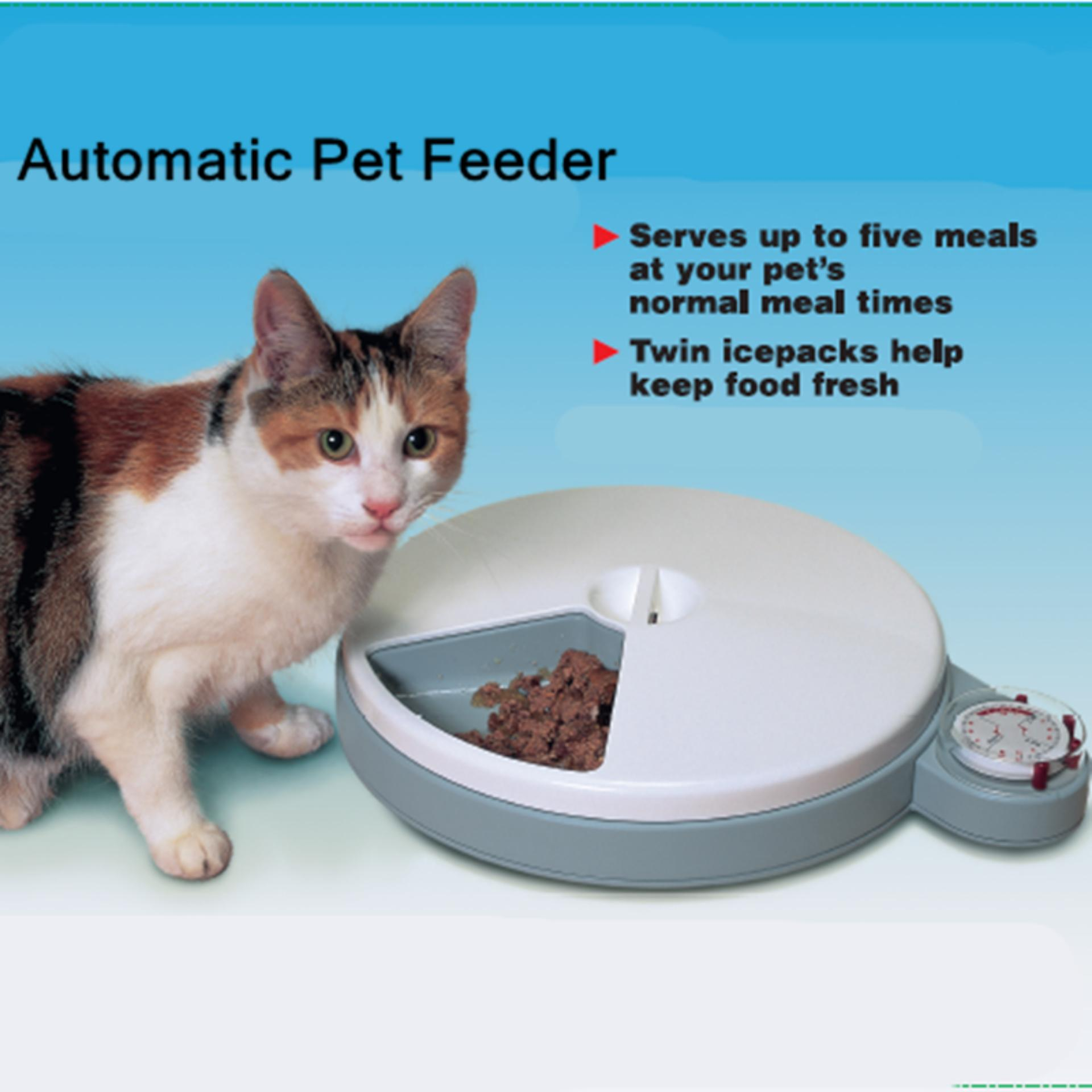 petsafe com chewy eatwell pet ac dp video feeder automatic meal